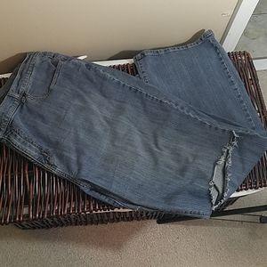 Plus Size Distressed Jeans by Venezia Size 24